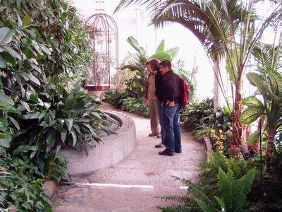 Serra in un palazzo del giardino Mirabel.